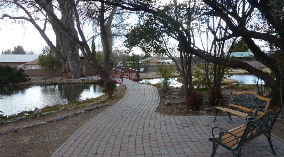 2 Meditation garden Feb 19