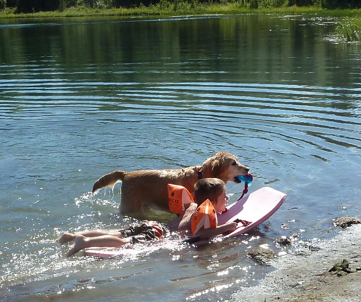 P1190667 Dog-kid
