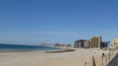 P1000342 Puerto Penasco beach (Large)