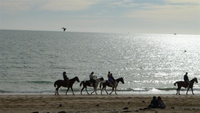 P1000601 beach riders (Large)