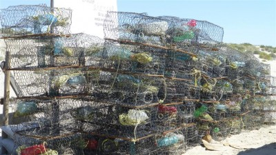 P1000845 Crab pots (Large)