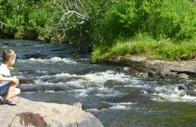 P1010776 Soldotna Creek
