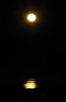 P1040139 Moonrise rev