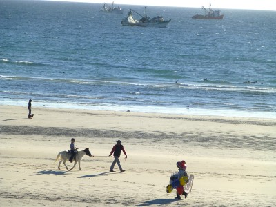 P1060910 beach life