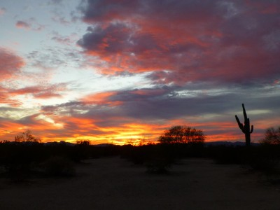 P1100989 Camp sunrise