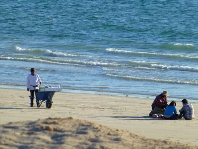 P1110008 Beach life