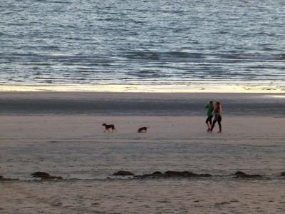 P1110060 Beach walkers