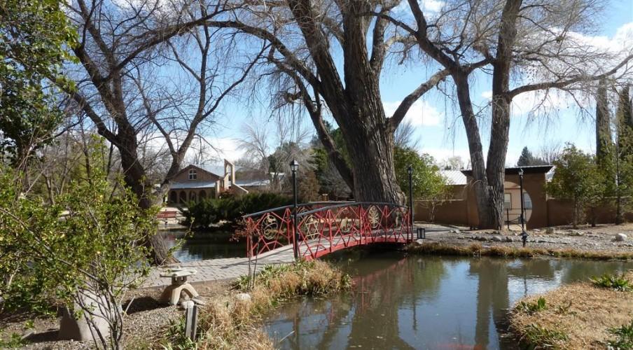 3 Meditation garden Feb 19